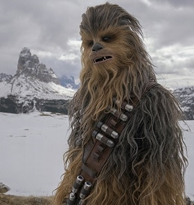 Chewbacca in the snow